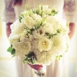 en güzel Kız İsteme Çiçeği